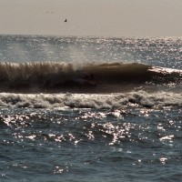 Danny. Virginia Beach / OBX, Bodyboarding photo