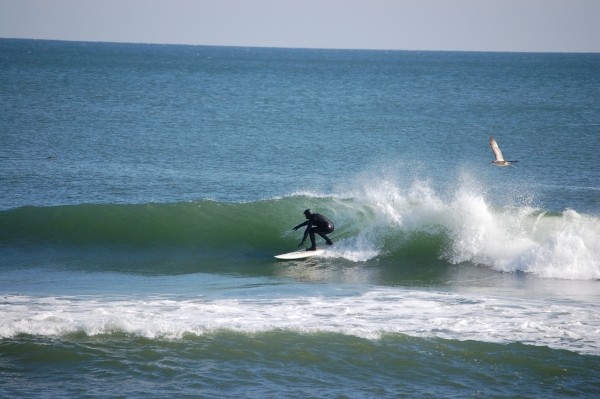 B. Drew DEAL - 1/27/10. New Jersey, Surfing photo