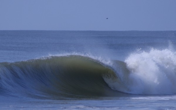 Hanna - Central Nj. New Jersey, surfing photo