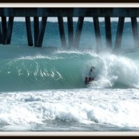 Pitted Photo taken by: Billy Davis