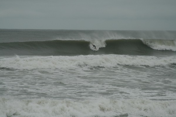 High Cholesterol. Virginia Beach / OBX, Surfing photo