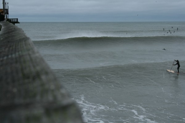 What's Sup. Virginia Beach / OBX, Empty Wave photo