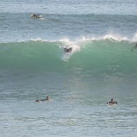 Steamer Lane - Mavericks Swell PhiloSurfer at the crowded