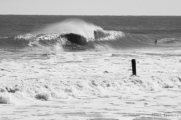 winter ocmd