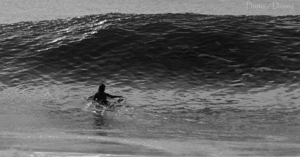 Ocmd j. Delmarva, Surfing photo