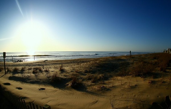 Ocmd early morning shot. Delmarva, Scenic photo