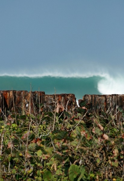 Rincon no one. Puerto Rico, Surfing photo