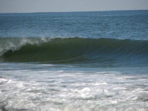 Unicorn Palace 11/27. Delmarva, surfing photo