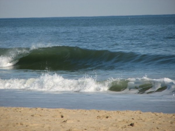 Unicorn Palace 11/27 Magical. Delmarva, surfing photo