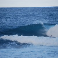 barbados. Barbados, surfing photo