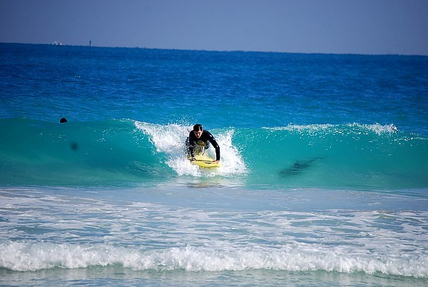 Shark. South Florida, Surfing photo