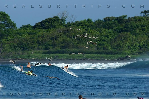 Real Surf Trips Costa Rica Your buddies the beach and