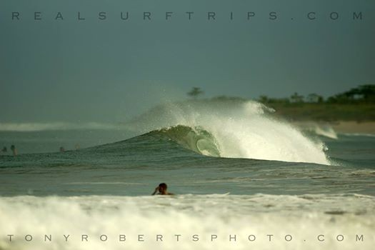 Real Surf Trips Costa Rica When you see this on your