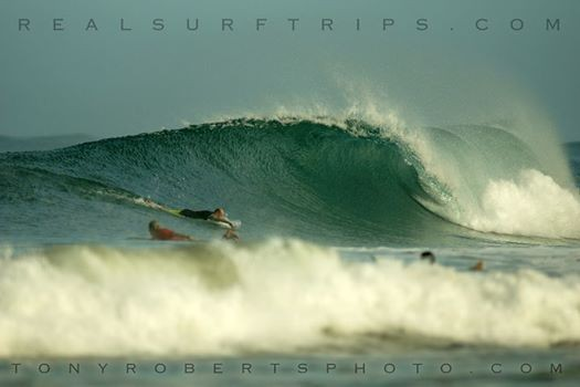 Real Surf Trips Costa Rica Paddling into a wave is