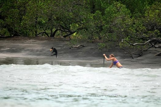 Real Surf Trips Costa Rica The beach life is he one