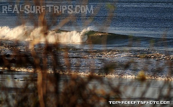Real Surf Trips Costa Rica Finding that perfect wave