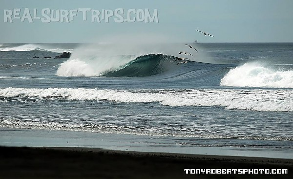 Real Surf Trips Costa Rica Encountering REAL bliss