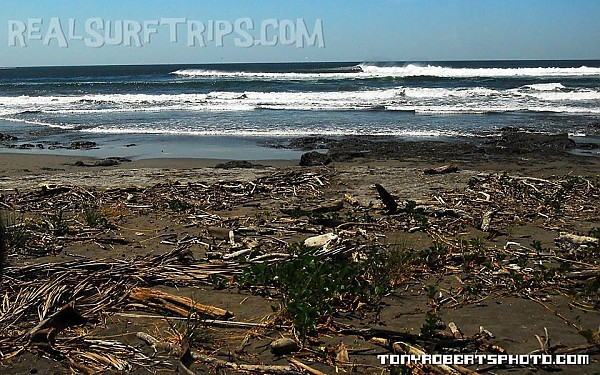 Real Surf Trips Costa Rica A good paddle to a quiet