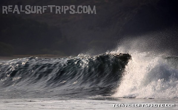 Real Surf Trips Costa Rica What would you do with all