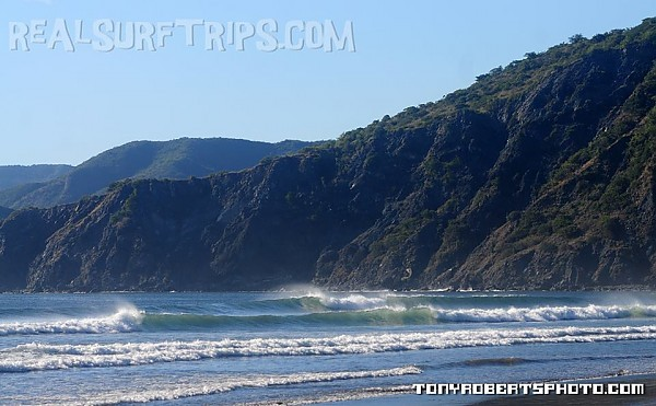 Real Surf Trips Costa Rica a tropical dry forest framing