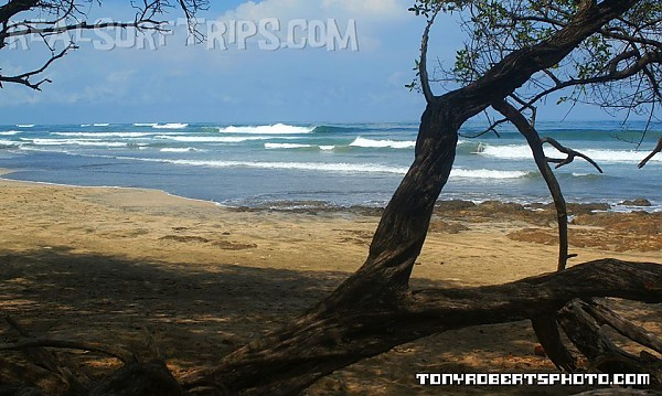Real Surf Trips Costa Rica ...where the tropical dry