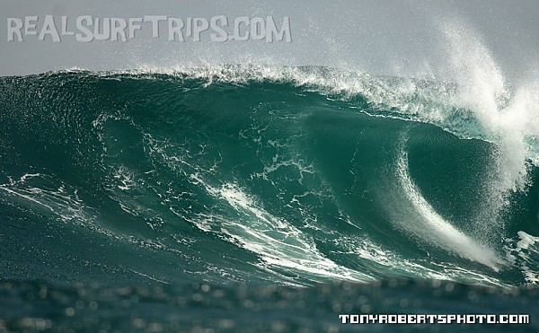 Real Surf Trips Costa Rica REAL Guanacaste juice....it's
