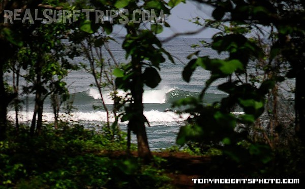 Real Surf Trips.com jungle trekkin' just minutes away....REAL