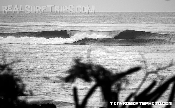 Real Surf Trips Costa Rica Right or left?