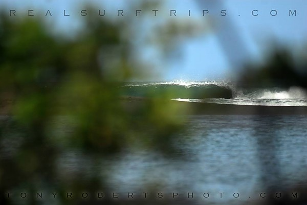 Real Surf Trips The fruits of exploration tasted on