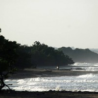 Real Surf Trips Costa Rica ...a coastline with no wasted