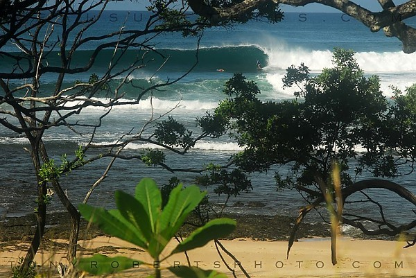 Real Surf Trips Costa Rica A solid bottom turn and