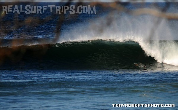 Real Surf Trips.com a morning wavescape for your mind