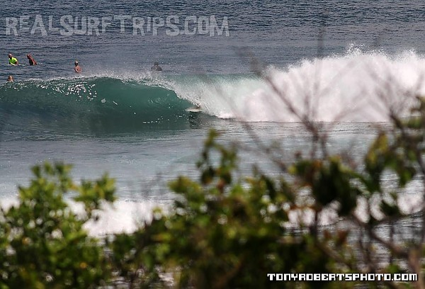Real Surf Trips Costa Rica Finding a little shade from