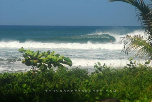 Real Surf Trips Costa Rica What would you do with a