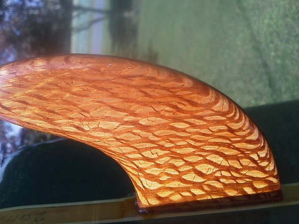 img 20111004 135900 fin close up---lacewood.. United States, Surf Art photo