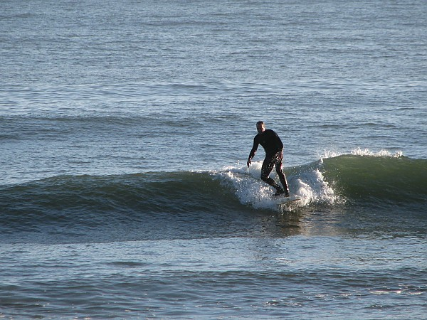 Cali Cruiser. United States, Surfing photo