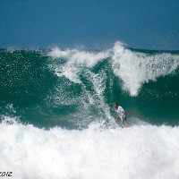 wilderness monster. Puerto Rico, Surfing photo