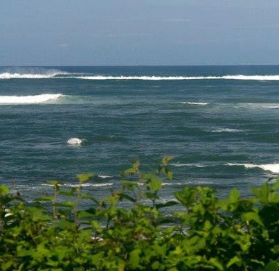 Real Surf Trips ....another Indo-like lineup with no