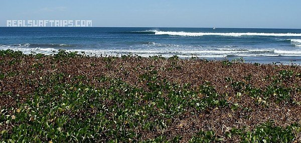 Real Surf Trips With so many spots here life is spicey....REAL