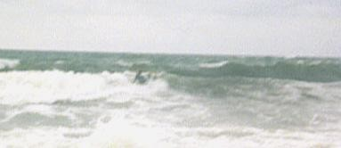 360 - bad quality. United States, surfing photo