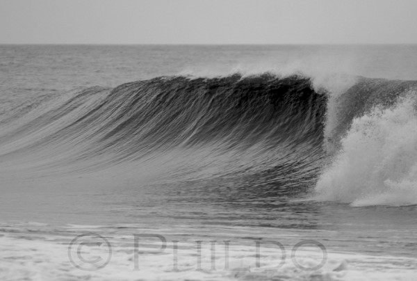 I like rights. Delmarva, surfing photo