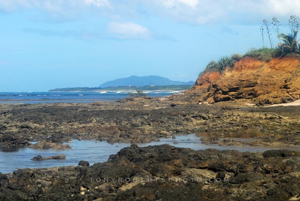 At low tide the reef here out front is alive and vibrant....REAL