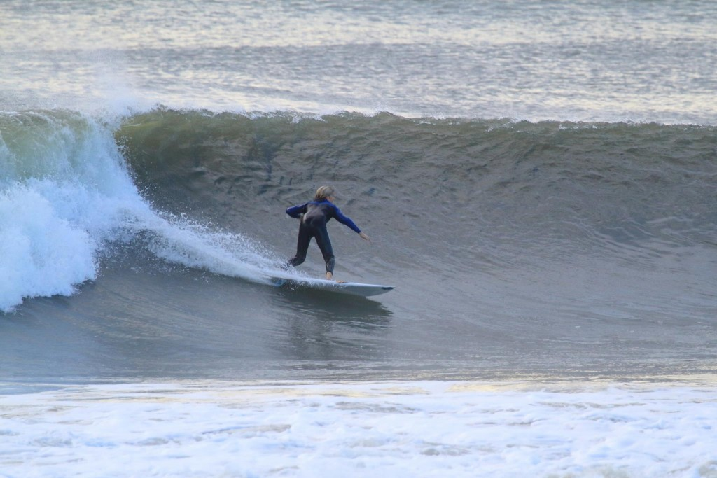 12 year old charger last fall.  5th Street OCNJ.