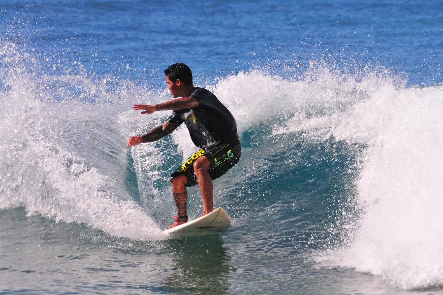 Tracks, Oahu. Oahu, surfing photo