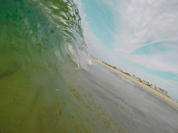 Unriden Beauty. United States, Empty Wave photo