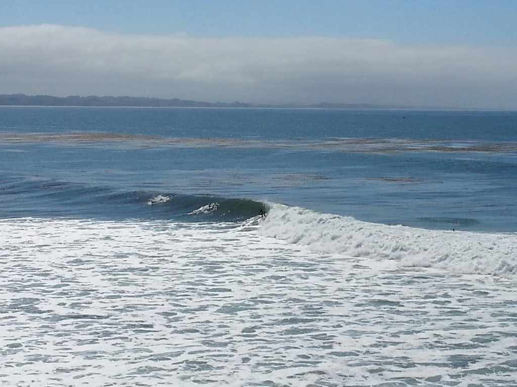 last Wednesday. Central California, surfing photo