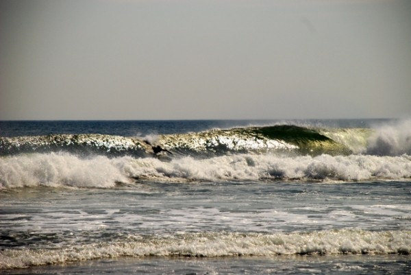 Nj 3/22. New Jersey, surfing photo