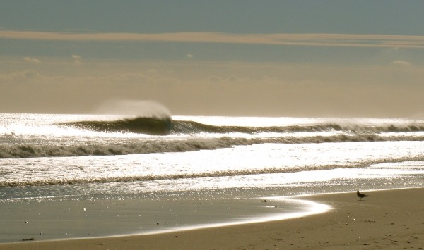 Seagull's Dream. DEc 2nd... Northern New England, Empty Wave photo