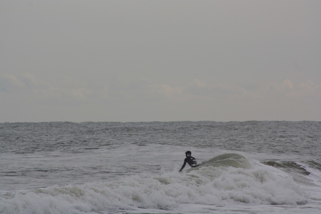 Creature Captured Somewhere in NJ. New Jersey, Surf Art photo