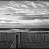 Feb.2011 .. Delmarva, Scenic photo
